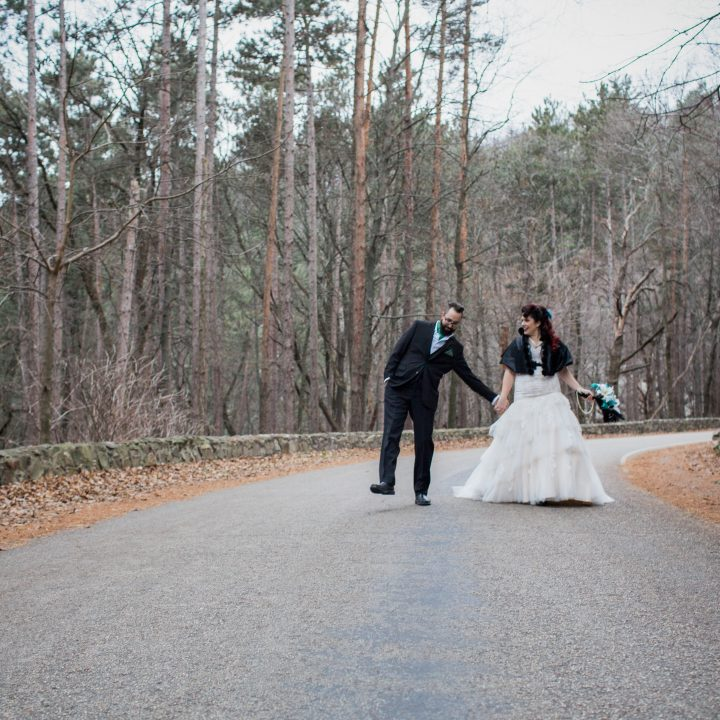 Winter Wedding in Baraboo, Wisconsin